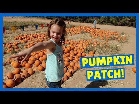 Addy & Maya at Schnepf Farm's Pumpkin Patch !!!
