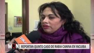 02/07/2015-18:50 REPORTAN QUINTO CASO DE RABIA CANINA EN YACUIBA