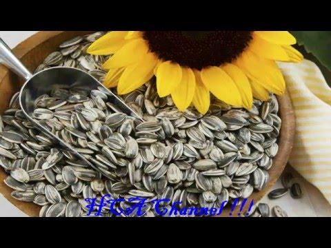 Semillas de girasol beneficios y propiedades