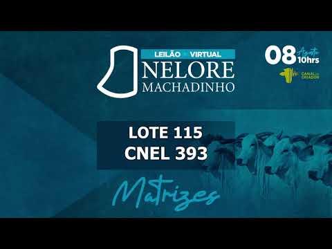 LOTE 115   CNEL 393
