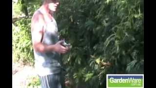 Bulldog Pruning Secateurs | Bulldog Gardening Tools