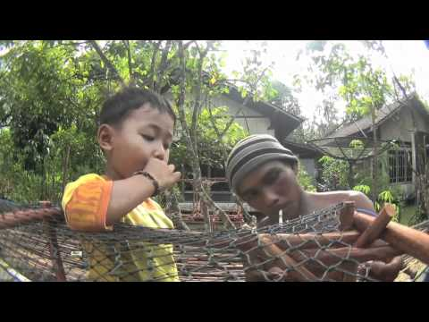 """Cari Hutan - In Search of Forest"" - Part 4 - Deforestation in Indonesia"