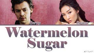 Baixar Hwasa X Harry Styles Watermelon Sugar Lyrics