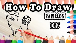How To Draw A Papillon DOG | Drawing step by step Papillon Dog | Draw Easy For Kids