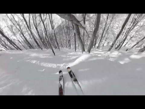Hakuba Cortina Tree Runs