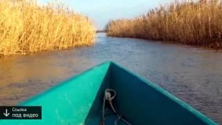 астрахань базы отдыха рыбалка видео(Ссылка на базу → http://upvot.es/19fA8Jz?id=1738 Рыбалка в астраханской области. Описание условий рыбалки, охоты и..., 2015-02-13T20:00:56.000Z)