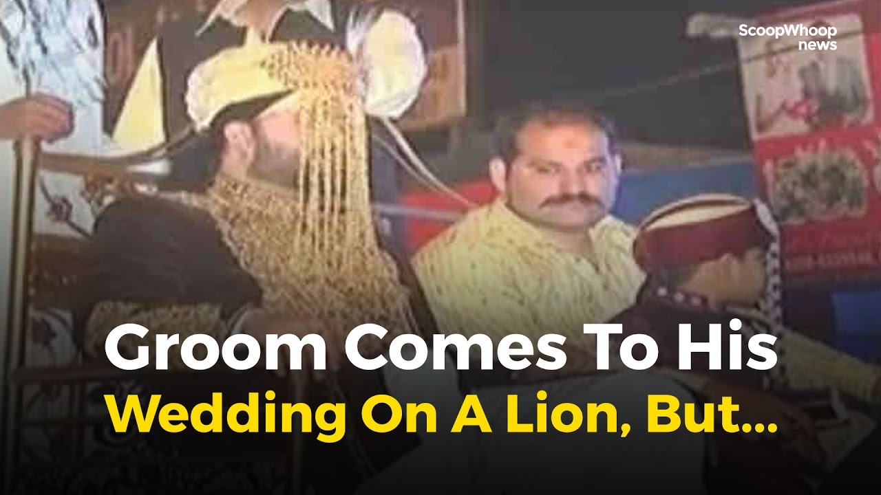 Pakistani Groom Comes To His Wedding On A Lion But Youtube