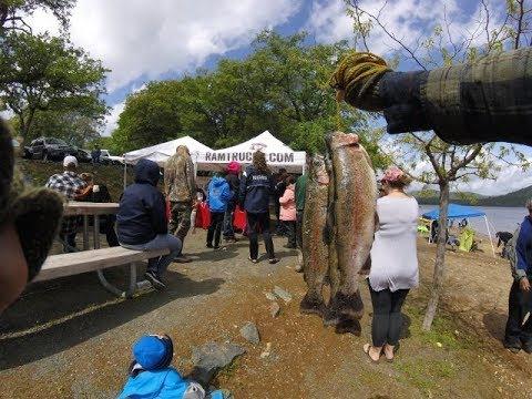 Collins Lake Trout Tournament