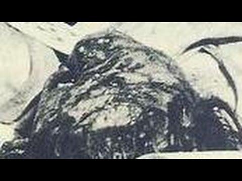 【閲覧注意】日航機墜落事故 日航ジャンボ123便 ボーイング747SR-100 生存者の声!あの時何が・・・生きる思い!感動!泣ける!