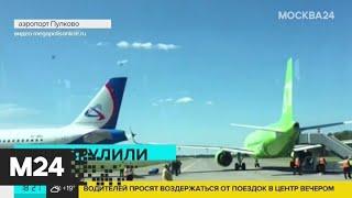 Прокуратура выясняет причины столкновения самолетов в Пулково - Москва 24