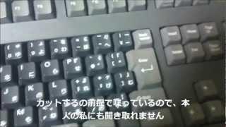 SEGA テラドライブ HTR-2106 ALPSバックリング キーボード