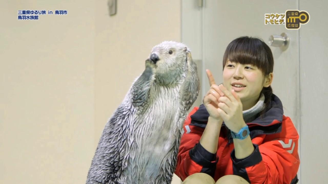 ちゃん ラッコ メイ 鳥羽水族館のラッコに会いに行こう!2頭のラッコのプロフィール、魅力いっぱいのラッコの秘密や生態を詳しく解説!