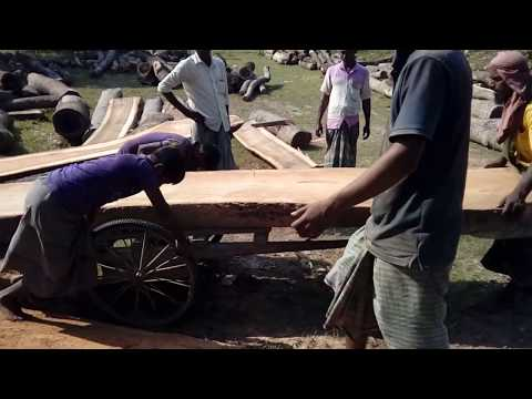 A Huge and Big and Massive Slice of Wood Cutting by 5 Workers in BD Saw Mill Asia/Village Saw Mill