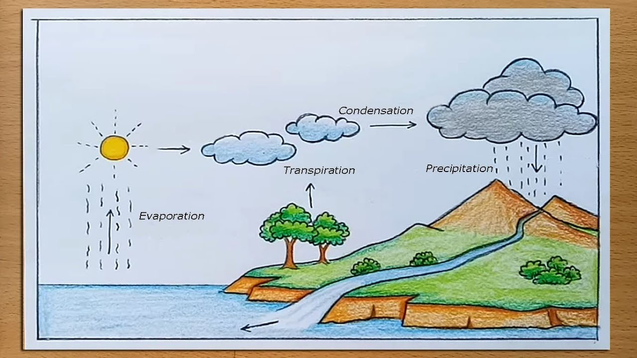 hight resolution of How to draw Water Cycle of a School Project - YouTube