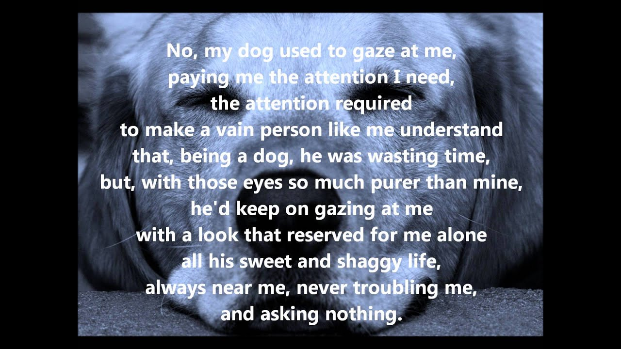 Prayer For A Dog S Passing