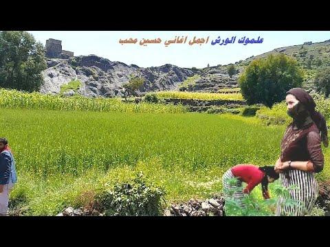 زهر خدك تفتش - اقوى اغاني_الفنان حسين محب -علا الطبيعه