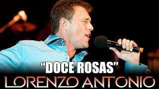 Top Tracks - Lorenzo Antonio