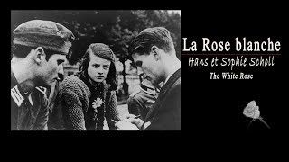 Белая Роза Ганс и Софи Шолль