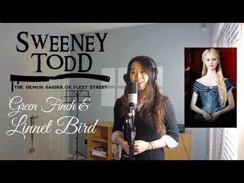 Green Finch and Linnet Bird - Sweeney Todd | Winnie Su (Cover)