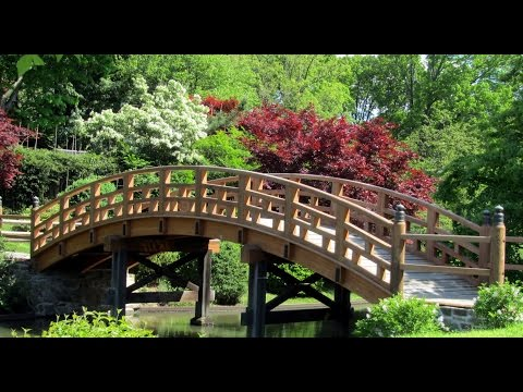 Missouri Botanical Chinese and Japanese Garden Tour 2016