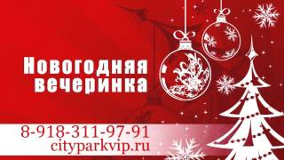 City Park. Новогодняя вечеринка!  8 918 311 97 91