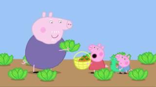 Свинка Пеппа на русском все серии подряд около 35 минут # 8 #DJESSMAY