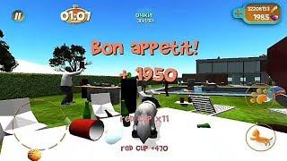Cat Simulator 2015 - Garden 3 - 53144 points