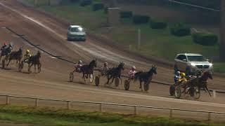 Vidéo de la course PMU PRIX DES VAUTOURS