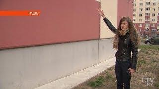 Дети бросали об стену птицу, будто мяч. Подробности шокирующей истории в Гродно