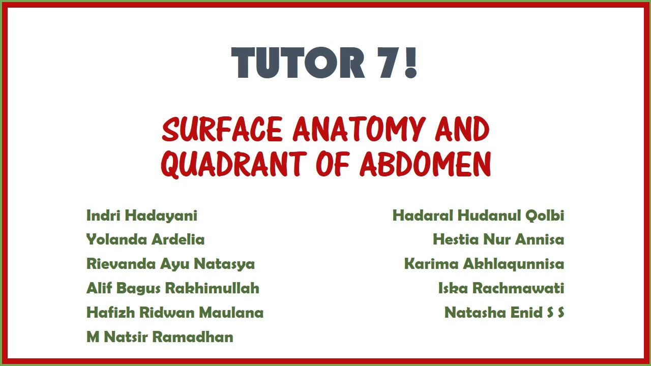 Surface Anatomy And Quadrant Of Abdomen Youtube