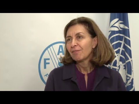Remarks by World Organisation for Animal Health Director-General