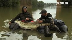 Pêche du Silure en Float tube  Globe Fishing Tarn et Garonne 15