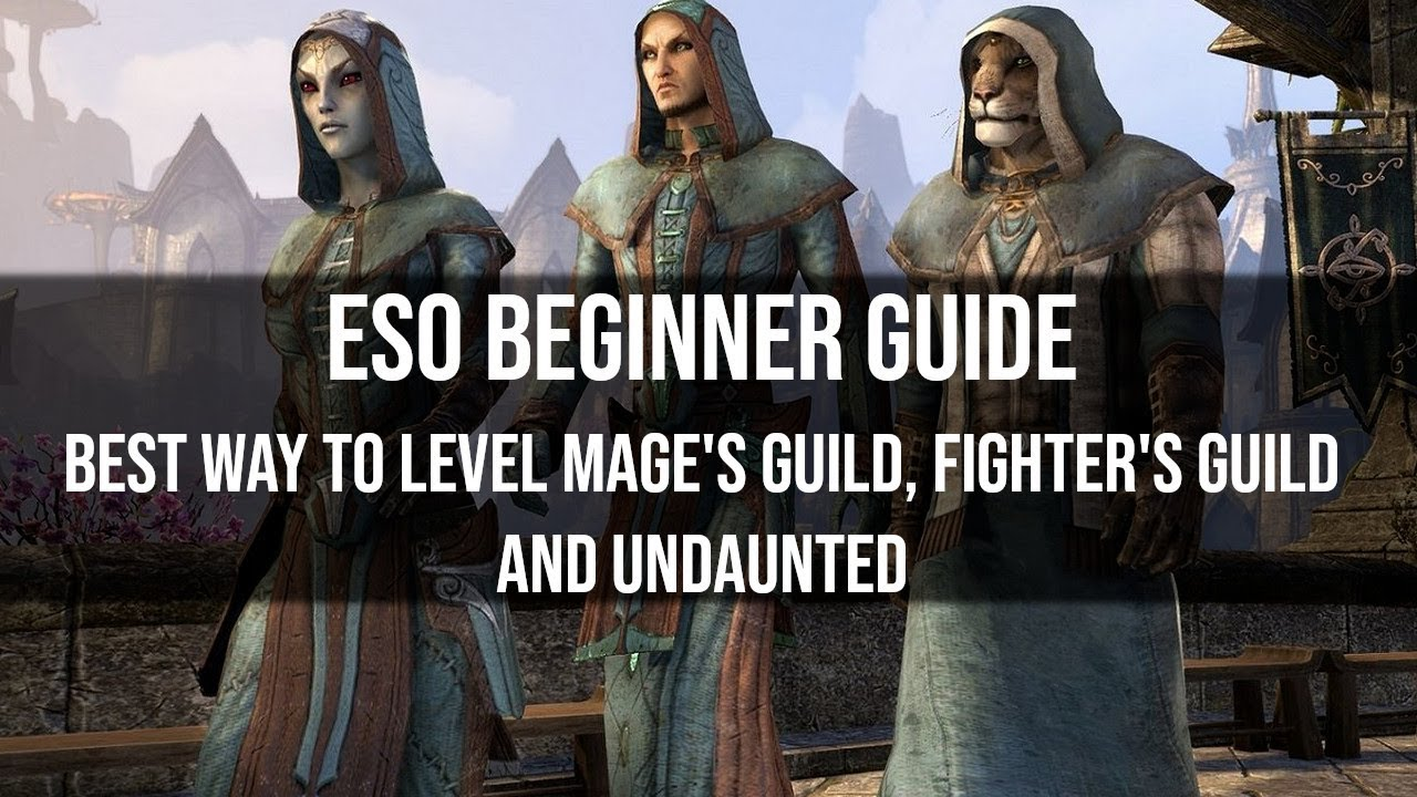 ⚔️ESO: How To Level Fighters Guild Quickly and Efficiently