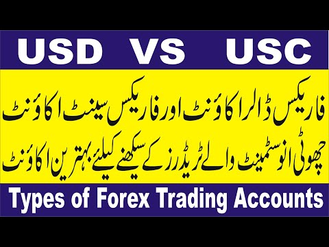usd-vs-usc-forex-trading-account-|-difference-between-dolor-and-cent-account-in-fx-|-tani-tutorial