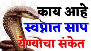 काय आहे स्वप्नात साप येण्याचा अर्थ | marathi vastu shastra tips...