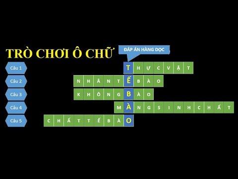 Hướng dẫn chi tiết cách thiết kế trò chơi ô chữ (CrossWord) trong PowerPoint 2010-2016