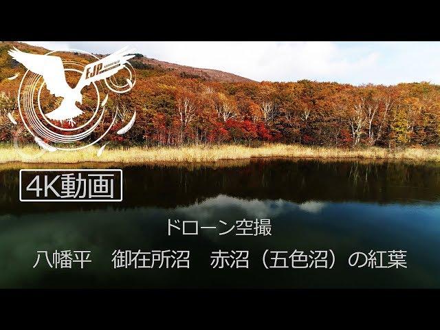 ドローン空撮 八幡平 御在所沼・赤沼(五色沼)と松川玄武岩【4K】