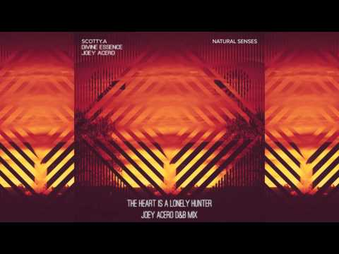 Scotty.A - The Heart Is A Lonely Hunter feat. Divine Essence (Joey Acero Drum & Bass Mix)
