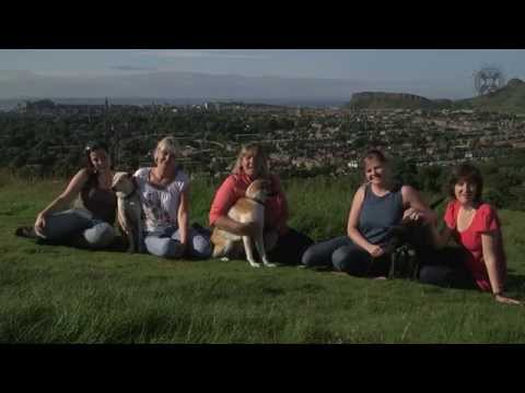 Introduction to the Animal Behaviour and Welfare Team
