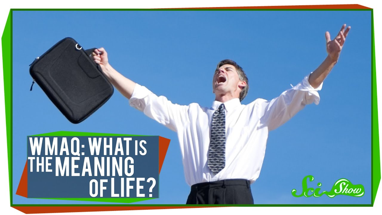 Worlds Most Asked Questions What is the Meaning of Life