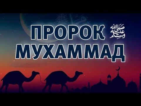 Пророк Мухаммад ﷺ Любимец Всевышнего 1