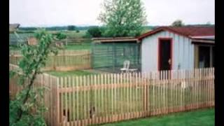 Dog Kennels Surrey