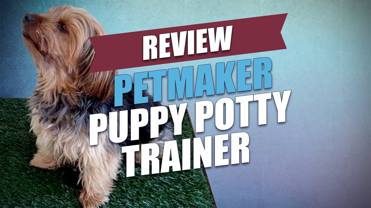 Petmaker Puppy Potty Trainer Review 2018