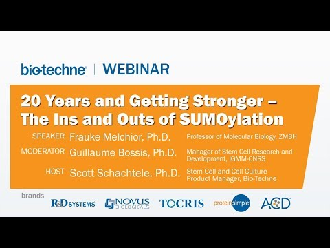 20 Years and Getting Stronger – The Ins and Outs of SUMOylation