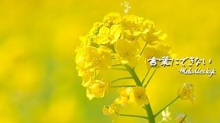 "sub title ""KOTOBANI DEKINAI 2014 Ryo Osaka Gallery version"" この作..."