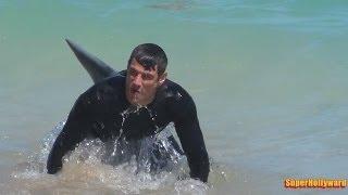 Repeat youtube video SHARK PRANK!!! Fort Lauderdale Beach
