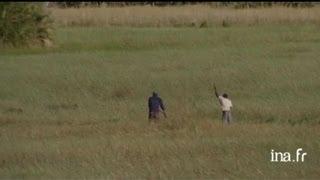 Botswana : pirogue dans les chemins d'eau