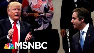 During Campaign, President Donald Trump Bragged About Online Polls Cohen Rigged | Hardball | MSNBC