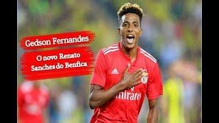 Benfica | Gedson Fernandes o novo Renato Sanches.