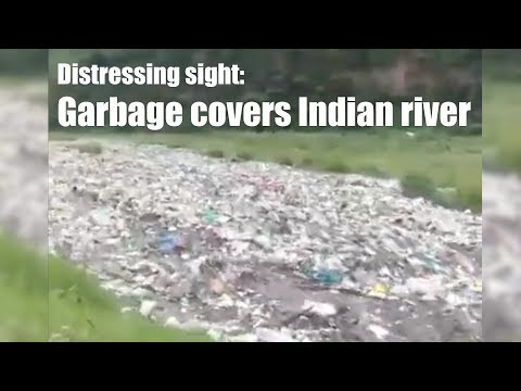 Distressing sight: Garbage covers Indian river that supplies